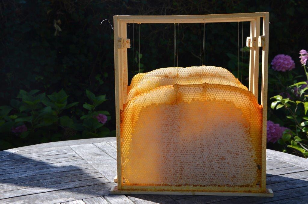 raam horizontale bijenkast