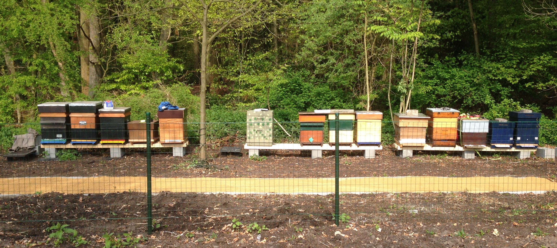 bijenkasten op rij