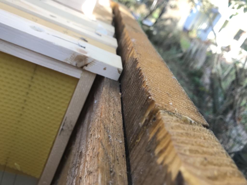 bijenruimte van 8mm tussen raam en zijwand