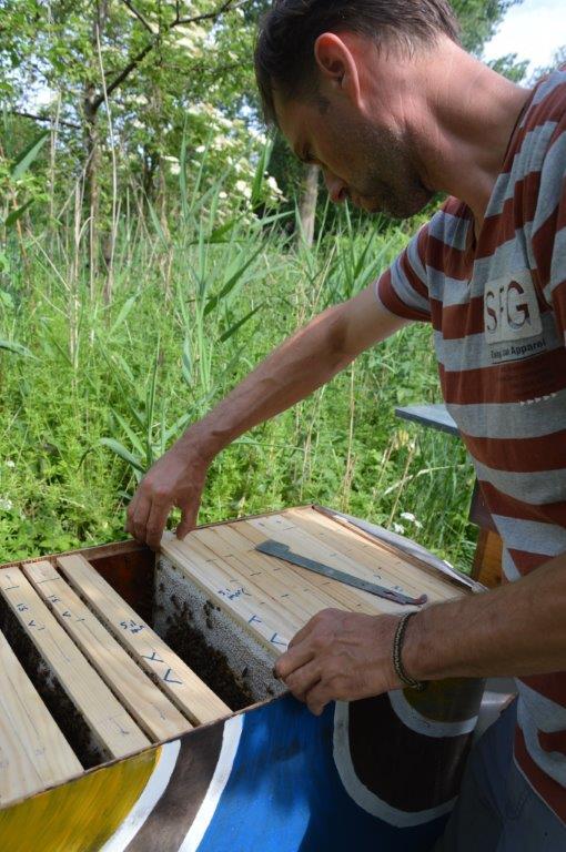 broedramen verplaatsen naar andere kant van schutblok voor broedaflegger