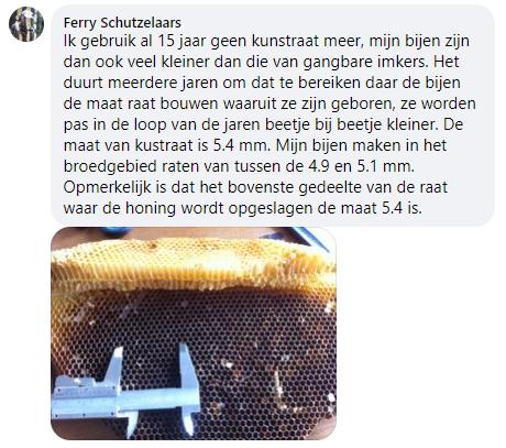Ferry-Schutzelaars-over-kleine-cellen-in-zijn-bijenvolken